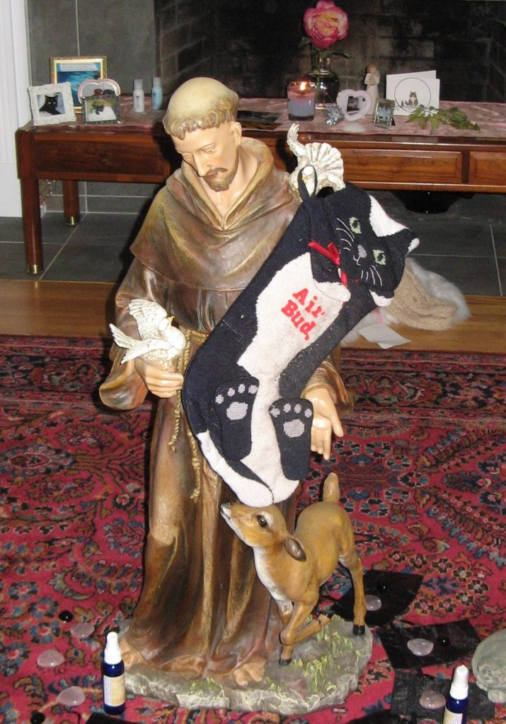Pet loss during holidays-Stocking for cat on St. Francis statue