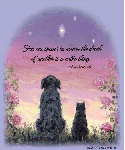 Healing Pet Loss Workshop-For one species to mourn the death of another is a noble thing. Aldo Leopold