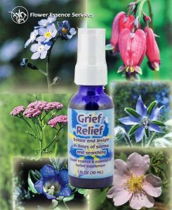 Flower essenes to heal pet loss-image of Grief Relief flower essence bottle with flowers