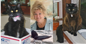 Teresa Wagner with her cats and a beloved whale